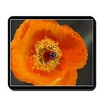 California Poppy Mousepad 