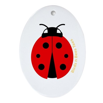 Ladybug Oval Ornament