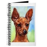 MinPin Journal