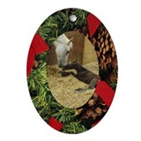 Cool Beauty horse art Oval Ornament