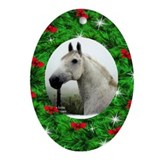 Cute Horse photography Oval Ornament