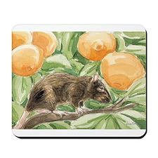 Angel/tangerines Mousepad