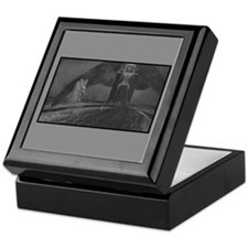 Dreamland Keepsake Box