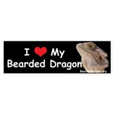 I Love My Bearded Dragon Bumper Bumper Sticker