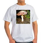 Large and small mushrooms Light T-Shirt