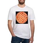 Spongy Cap Mushroom 20X Fitted T-Shirt