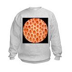 Spongy Cap Mushroom 20X Kids Sweatshirt