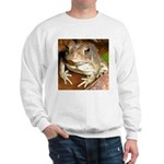 King Toad On Toadstool Throne Sweatshirt