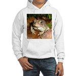 King Toad On Toadstool Throne Hooded Sweatshirt
