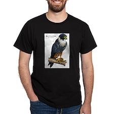 Bat Falcon T-Shirt