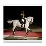Lipizzaner Stallion Tile Coaster