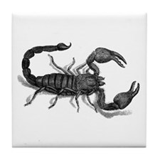 African Scorpion Tile Coaster