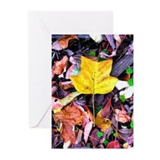 Cute Fall leaves Greeting Cards (Pk of 10)