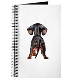 Dachshund Puppy Journal