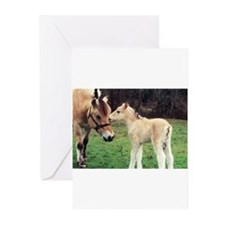 Cute Equine lovers Greeting Cards (Pk of 20)