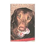 TASTY Chocolate Lab dog gift Mini Poster Print