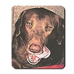 TASTY Chocolate Lab dog gift Mousepad
