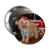 Yorkiepoos Rock Value pack!2.25&quot; Button (100 pack)