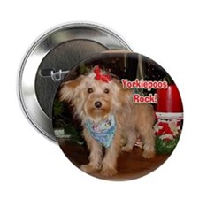 "Yorkiepoos Rock Value pack!2.25"" Button (100 pack)"