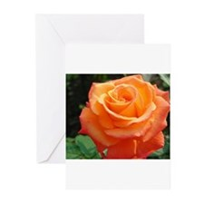 Cute Floral Greeting Cards (Pk of 20)