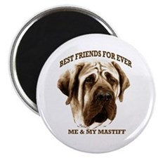 Cute Mastiff Magnet