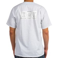 Maxwell's equations  Grey T-Shirt