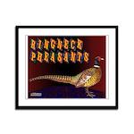 Ringneck Pheasants Framed Panel Print