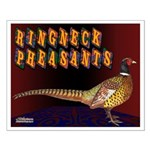 Ringneck Pheasants Small Poster