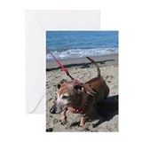 Doxie on the Beach Greeting Cards (Pk of 10)