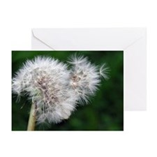 ...Gone To Seed... Note Cards (Pk of 10)