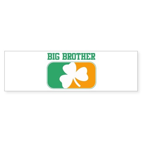 BIG BROTHER (Irish) Bumper Sticker