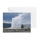 Yellowstone Faithful Greeting Cards (Pk of 10)