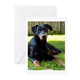 Doberman Pinscher Greeting Cards (Pk of 10)