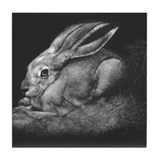 """Sage II"" Black-tailed Jackrabbit Tile Coaster"