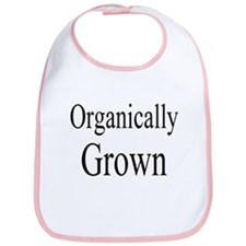 Organic/natural theme Bib