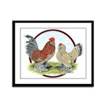 Belgian d'Uccle Bantams Framed Panel Print
