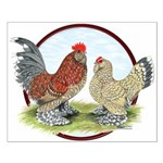 Belgian d'Uccle Bantams Small Poster
