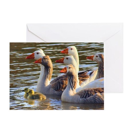Gray Goose Greeting Card