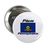 Plum Pennsylvania Button