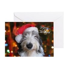 Old English Sheepdog Single Greeting Card