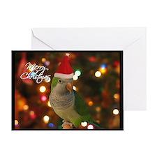 Quaker Parakeet Single Christmas Card