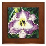 Cute Iris Framed Tile