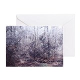 Sunlit Icy Trees Greeting Card