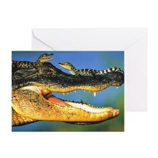 """Twins"" Greeting Cards (Pk of 20)"