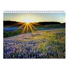 2014 Nature's Splendor Wall Calendar