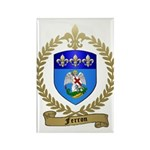 FERRON Family Crest Rectangle Magnet