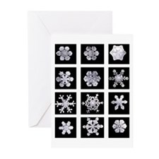 Snowflake Grid Holiday Cards (Pk of 20)