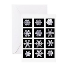 Snowflake Grid Solstice Cards (Pk of 20)