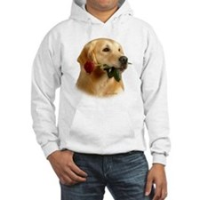 Golden Retriever (Male) and Red Hoodie