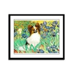 Irises / Papillon Framed Panel Print